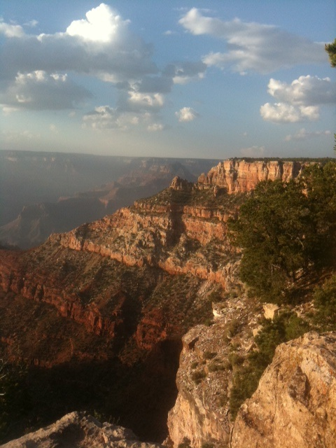 South rim:Grand Canyon